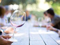Dégustation de vins catalans
