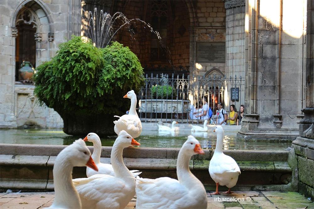 Santa Eulàlia - Barcelona Autrement